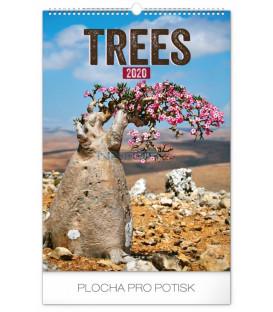 Nástenný kalendár Stromy 2020, 33 x 46 cm