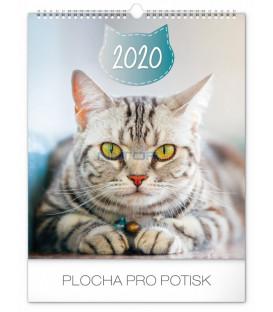Nástenný kalendár Mačky 2020, 30 x 34 cm
