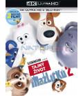 Tajný život maznáčikov 2 - 2019 (The Secret Life of Pets 2) (4K Ultra HD) - UHD Blu-ray + Blu-ray