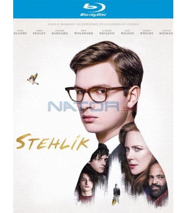Stehlík 2019 (The Goldfinch) Blu-ray