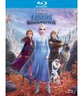 Ľadové kráľovstvo II - 2019 (Frozen II) Blu-ray