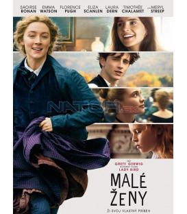 Malé ženy 2019 (Little Women) DVD