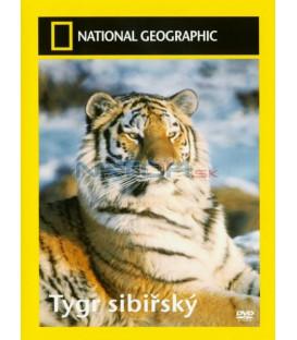 Tygr sibiřský (Tigers of the Snow)