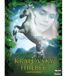 Královský hřebec (The Princess Stallion)