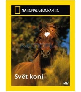 Svět koní (Horses)