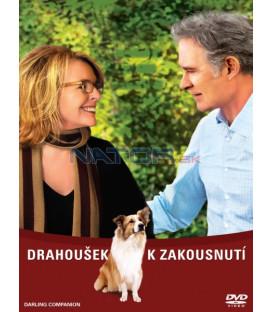 DRAHOUŠEK K ZAKOUSNUTÍ (Darling Companion) DVD