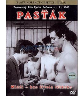 Pasťák DVD