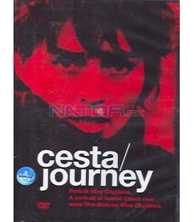 Cesta / Journey - Portrét Věry Chytilové