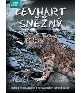 Levhart snězný (Snow leopard) DVD