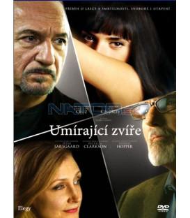 Umírající zvíře (Elegy) DVD