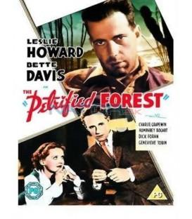 Zkamenělý les (The Petrified Forest)