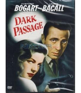 Temná pasáž (The Dark Passage)