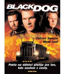 Black Dog / Černý pes