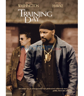 Training Day  (Training Day)   DVD