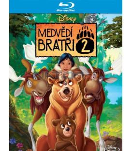 Medvědí bratři 2 (Brother Bear ) Blu-ray