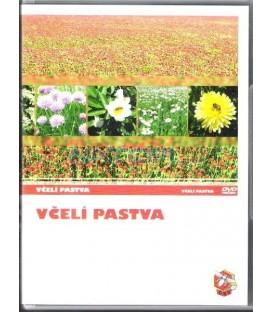 Včelí pastva DVD