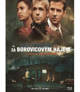 Za borovicovým hájem (Place Beyond the Pines) DVD