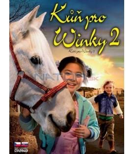 Kůň pro Winky 2 (Waar is het paard van Sinterklaas?) DVD