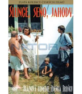 Slunce, seno, jahody DVD