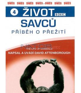 Život savců 4 (The Life of Mammals) DVD