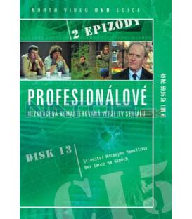 Profesionálové 13 DVD