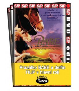 Prasátko Babe a delfín Filip v hlavní roli  / kolekce 3 DVD