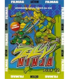 Želvy Ninja - disk 12 (Teenage Mutant Ninja Turtles) DVD