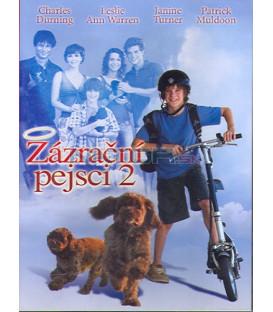 Zázrační pejsci 2 (Miracle Dogs) DVD