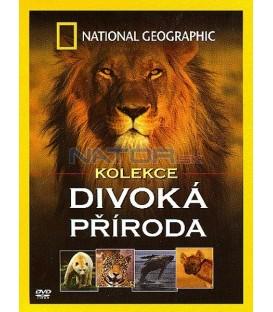 National Geographic - kolekce Divoká příroda (4 filmy v balení)