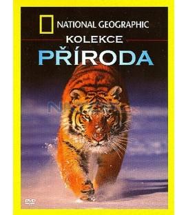 National Geographic - kolekce Příroda (4 filmy v balení)