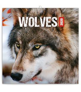 Poznámkový kalendár Vlky 2020, 30 x 30 cm