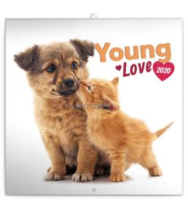 Poznámkový kalendár Young Love 2020, 30 x 30 cm