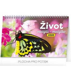 Stolový kalendár Život motýlů – motýľov CZ/SK 2020, 23,1 x 14,5 cm