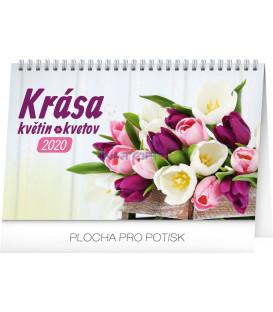 Stolový kalendár Krása květin – Krása kvetov CZ/SK 2020, 23,1 x 14,5 cm