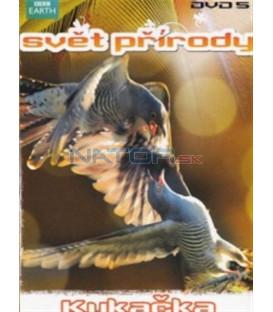 Svět přírody - DVD 5 - Kukačka (Natural World: Cuckoo) DVD