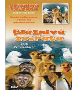 Bláznivá zvířata (Animals & Wildlife - Wonderful World - Animal Capers) DVD