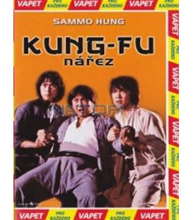 Kung-fu nářez (Lin shi rong) DVD