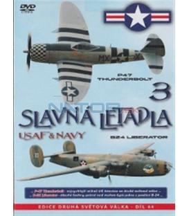 Slavná letadla USAF a NAVY 3 (Famous Planes: The B-24 / The P-47) DVD