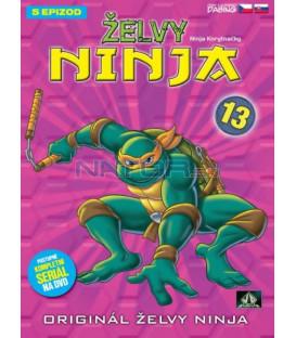 ŽELVY NINJA 13   (Teenage Mutant Ninja Turtles)  DVD