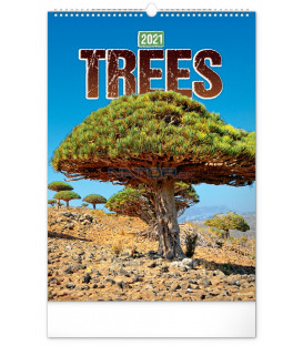 Nástenný kalendár Stromy 2021, 33 × 46 cm