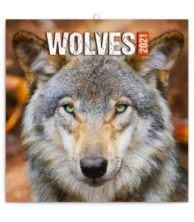 Poznámkový kalendár Vlky 2021, 30 × 30 cm