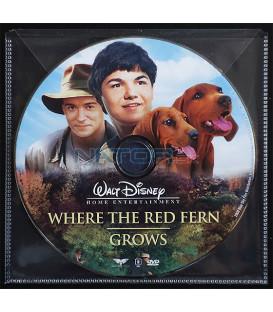 Kde roste červené kapradí (Where the Red Fern Grows) DVD (BALENIE V OBÁLKE Z FOLIE PRIEHĽADNÁ)