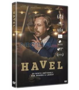 HAVEL 2020 DVD