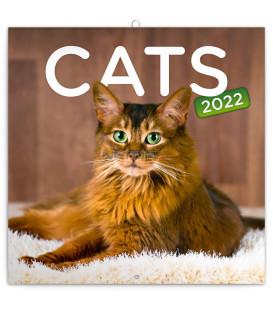 Poznámkový kalendár Mačky 2022 30 × 30 cm