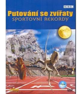 Putování se zvířaty: Sportovní rekordy (Animal Games)