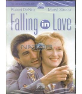 Zamilovat se (Falling In Love)